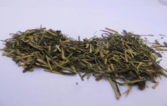 Té-verde-Kukicha-BIO